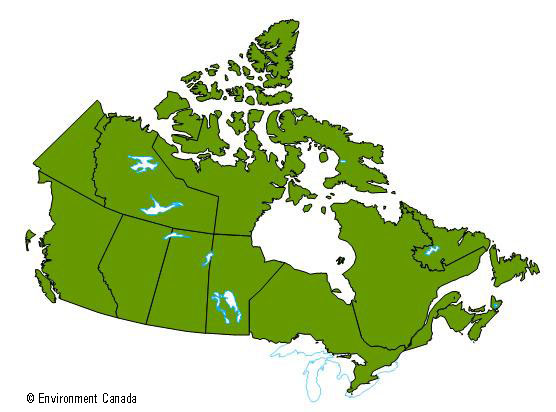 A map of Canada indicating the whole country as having been impacted by El Niño and a warmer winter.