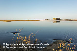 © Agriculture and Agri-Food Canada.  Flooded farmland near Weyburn, Saskatchewan in April.